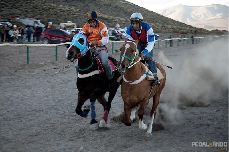 carreras caballo 2